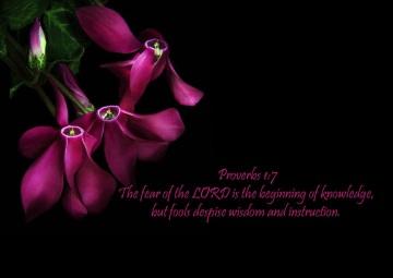 Proverbs 1.7